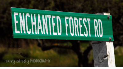 Enchanted Forest Road sign in Eastsound, WA